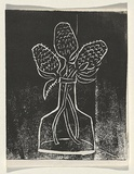 Title: Card: [banksia in vase] | Technique: linocut, printed in black ink, from one block