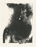 Artist: KELLY, William | Title: X-Ray. | Date: 1988-93 | Technique: screenprint, printed in black ink, from one stencil