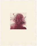 Artist: HEADLAM, Kristin | Title: Oh Rose X | Date: 1997 | Technique: aquatint and drypoint, printed in colour, from two copper plates