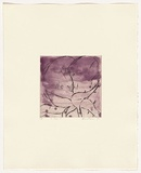 Artist: HEADLAM, Kristin | Title: Oh Rose V | Date: 1997 | Technique: aquatint and drypoint, printed in colour, from two copper plates